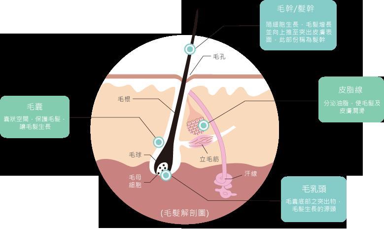 src=http___hunan.shandong.akbchina.com_upload_20151230_1451467119.5195_9811.png&refer=http___hunan.shandong.akbchina.jpg